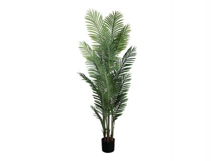 Palmbladen in pot ARECA