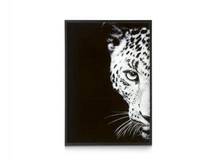 """Schilderij """"Cheetah"""""""
