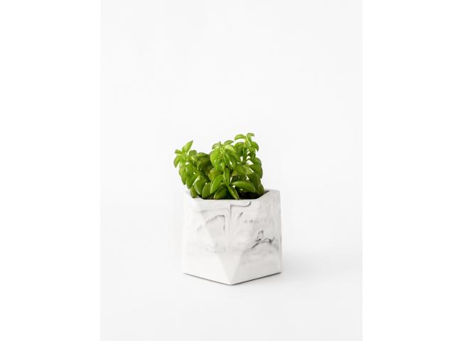 Plantenpot 5,5 cm MARE - Mille