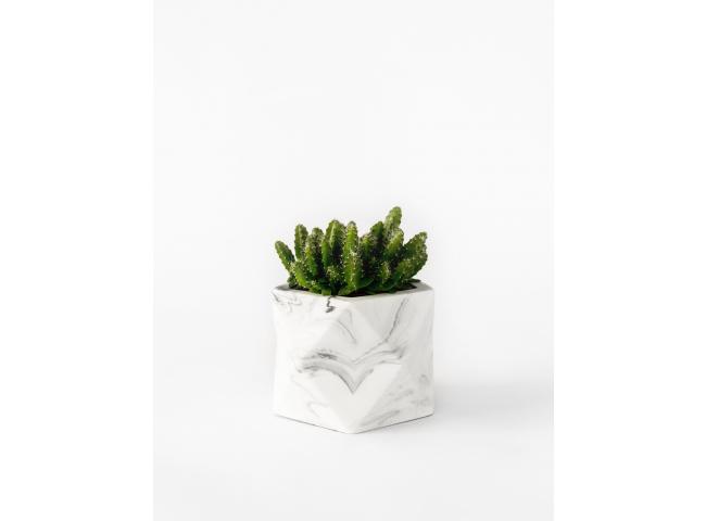 Plantenpot Ø5,5 cm PALUA - Pom